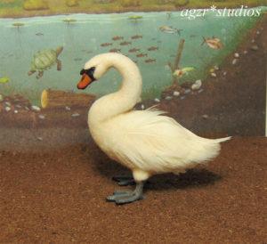1:12 miniature swan bird handmade realistic ooak dollhouse diorama roombox duck