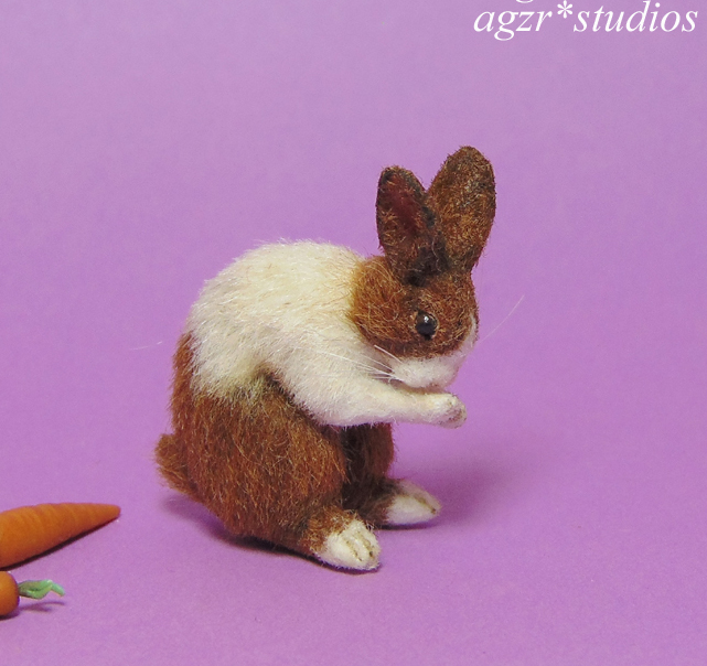 1:12 furred miniature dutch bunny washing his face