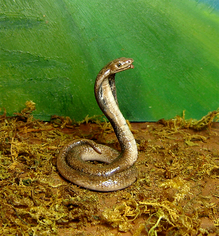 Ooak 1:12 cobra snake handmade realistic handsculpted