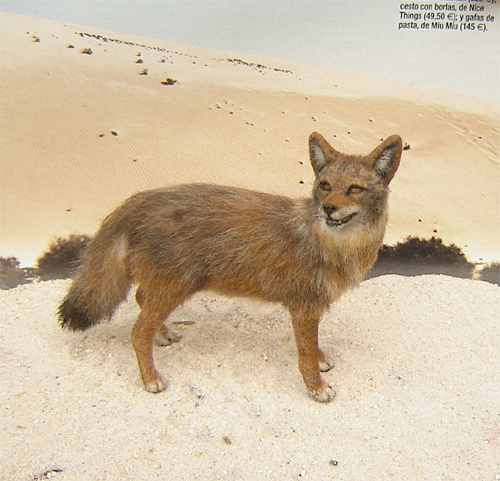 1:12 dollhouse miniature coyote wild dog handsculpted furred realistic