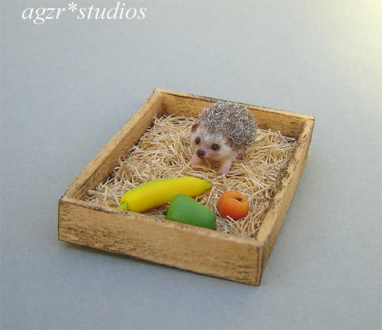 1:12 miniature hedgehog ooak dollhouse pet