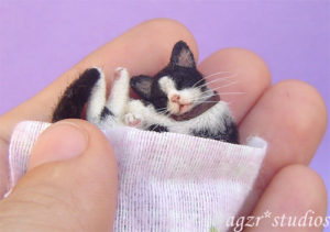 Ooak 1:12 sleeping tuxedo cat miniature dollhouse