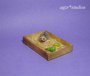 1:12 scale miniature hedgehog realistic pet