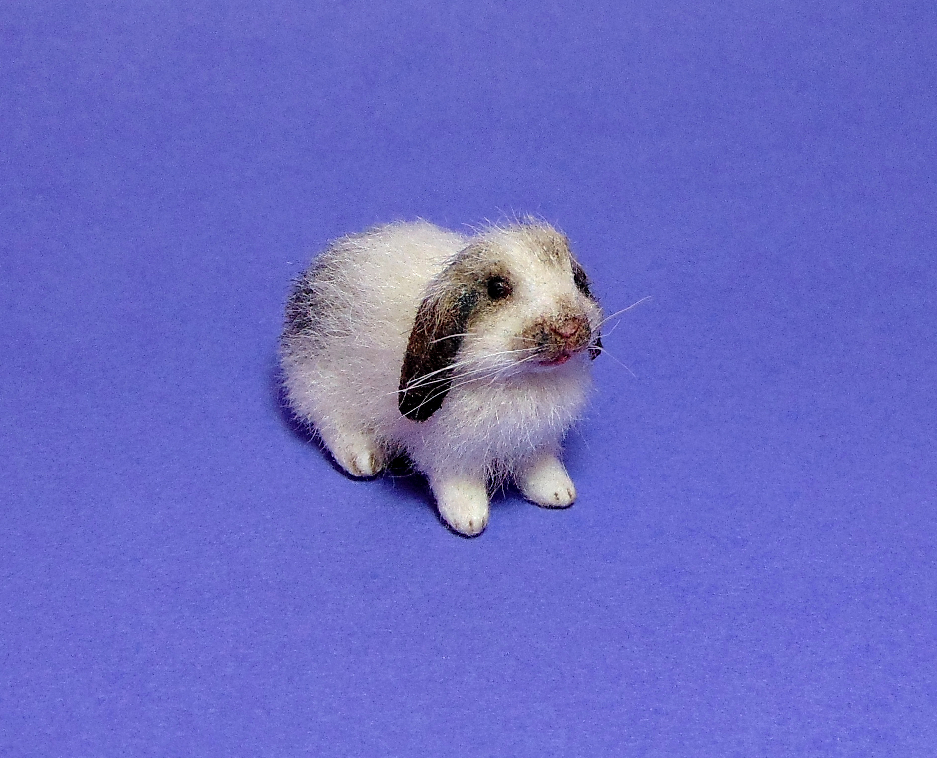 1:12 dollhouse furred miniature lop bunny handcrafted ooak