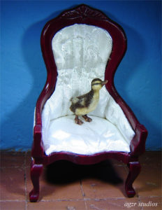 Ooak 1:12 dollhouse miniature mallard duckling furred dollhouse animal pet