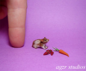 1:12 furred miniature Hamster