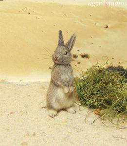 1:12 miniature wild bunny rabbit hare realistic dollhouse furred handmade ooak