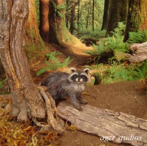 Ooak 1:12 dollhouse racoon miniature furred animal